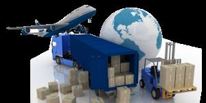 Delivery HOBI TERNAK word3