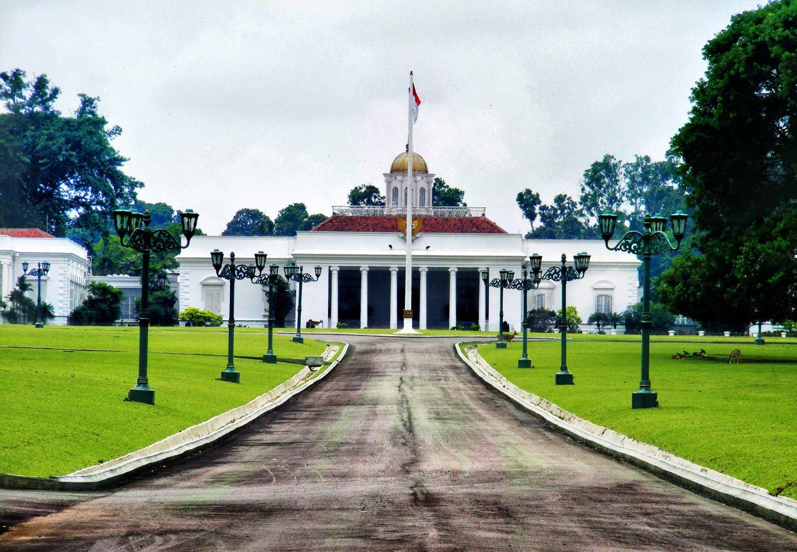 Kota Bogor HOBI TERNAK Pengiriman Ayam Polan word2