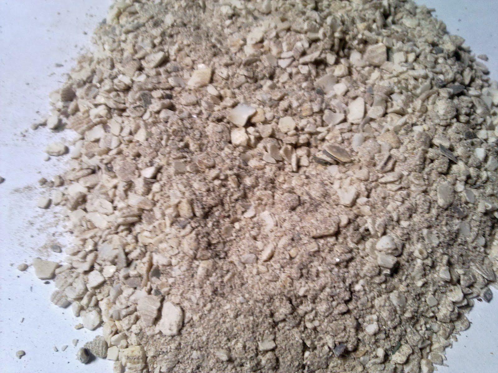 tepung keong