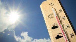Termometer sebagai Pengatur Suhu Kandang | Image 10