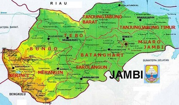 Jual DOC atau Bibit Ayam Kampung Super (Joper) untuk Daerah Jambi