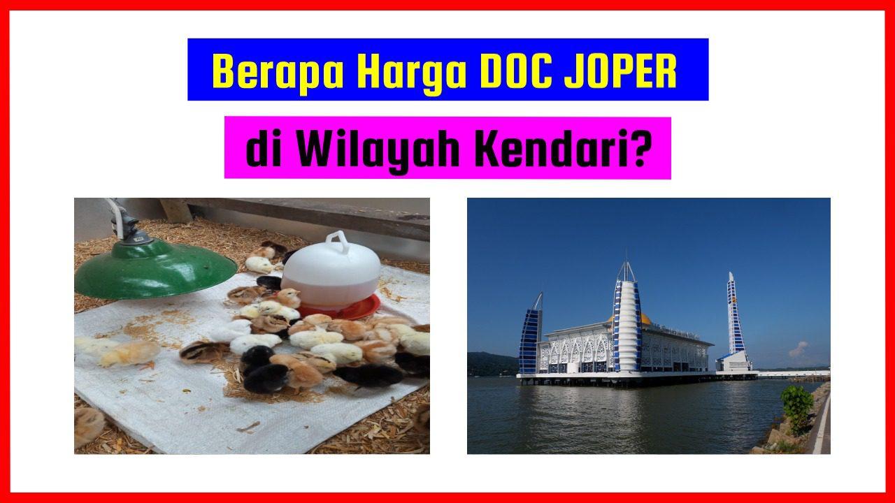 DOC Joper Kendari