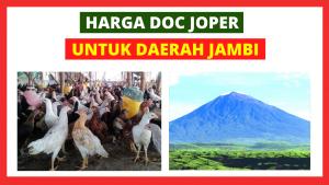 Joper Jambi HOBI TERNAK doc joer jambi word2