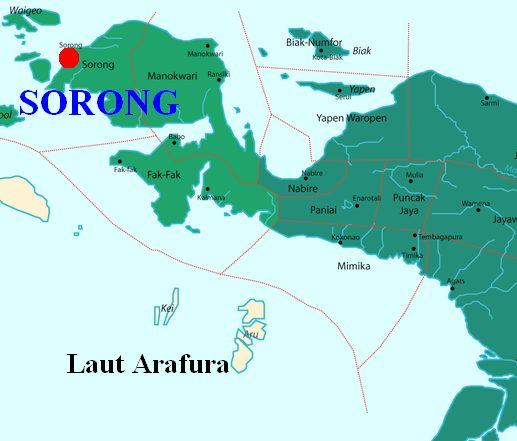 Harga Jual DOD atau Bibit Bebek Peking & Hibrida Pedaging untuk Daerah Sorong