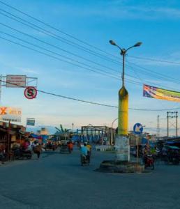 Harga Jual DOD atau Bibit Bebek Peking & Hibrida Pedaging untuk Daerah Tanjungbalai