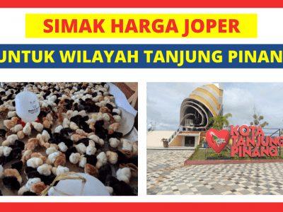 Joper Banda Tanjung Pinang 400x300 1 HOBI TERNAK Bibit Ayam Kampung Super word1