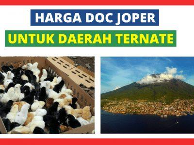 Joper Ternate 400x300 1 HOBI TERNAK Bibit Ayam Kampung Super word1
