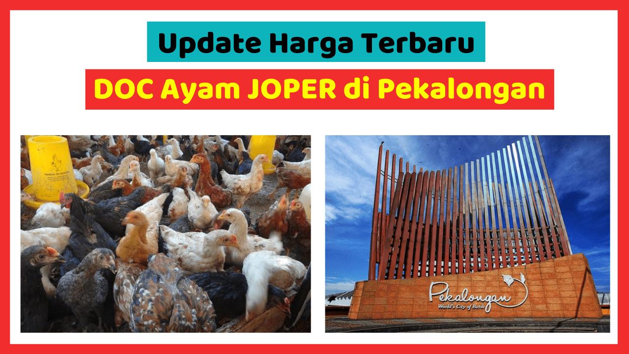 Kandang Ternak JOPER 2 HOBI TERNAK harga doc joper pekalongan word2