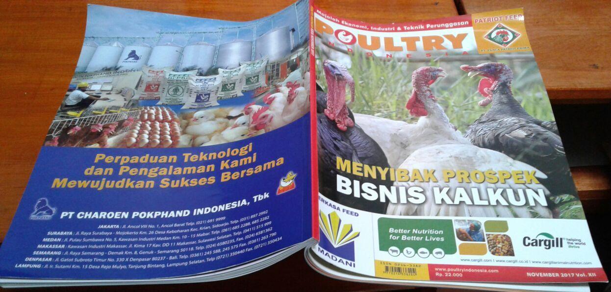 hobiternak.com Mendapat Kesempatan untuk di Liput oleh Majalah Poultry Indonesia dalam Mengenal Kalkun si Unggas Tambun (belum selesai)