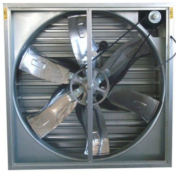 Kipas (fan) menjadi alat yang sangat penting di kandang closed house | Image 4
