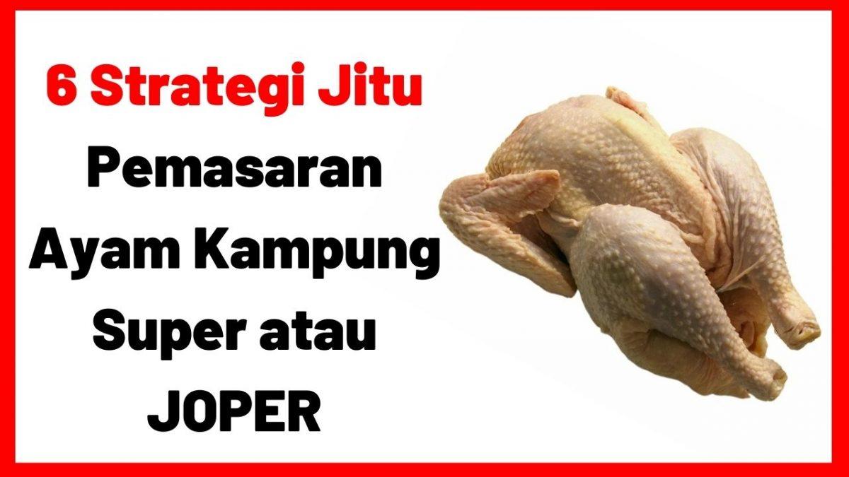 6 Strategi Jitu Pemasaran Ayam Kampung Super atau JOPER