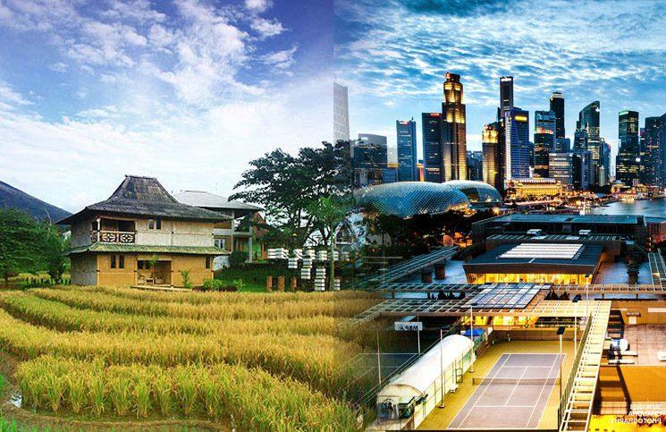 Perbedaan Beternak di Desa dan di Kota