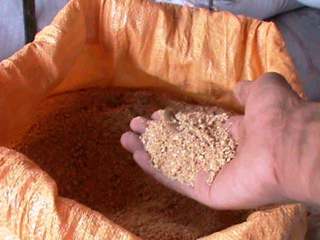 Bungkil kedelai dipercaya memiliki gizi yang baik untuk pertumbuhan daging ayam joper, tetapi alangkah baiknya jika peternak tetap membatasi pemberiannya sebagai bahan pakan campuran.