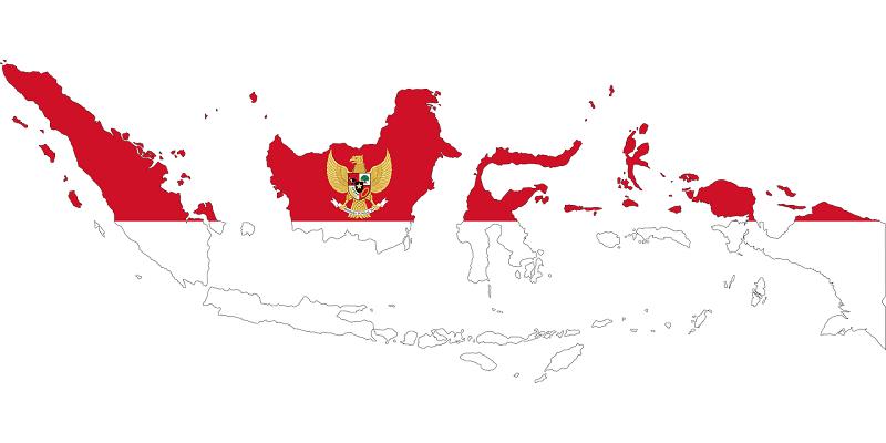 Jual DOD atau Bibit Bebek Peking Pedaging Siap Kirim ke Seluruh Indonesia