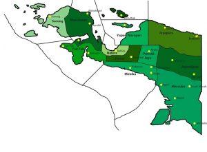 Daftar Harga DOC Ayam Petelur di wilayah Papua | image 7