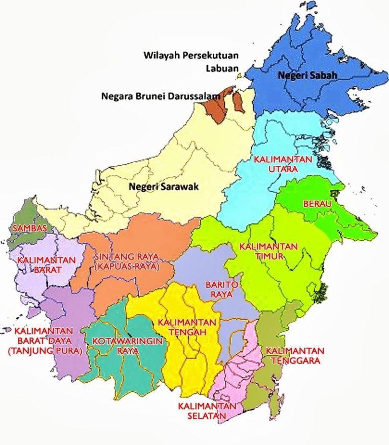 Daftar Harga DOC Ayam Petelur di wilayah Kalimantan | image 7