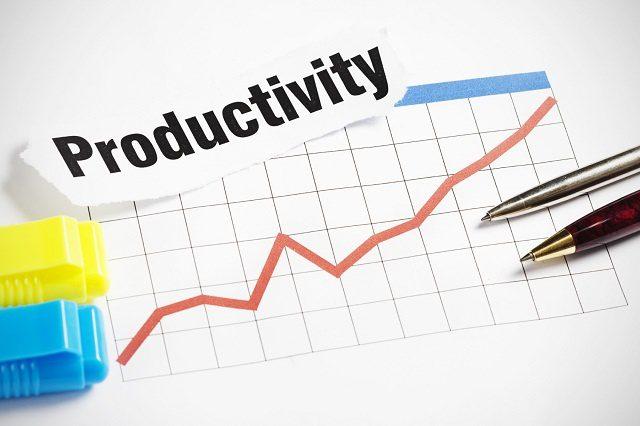 Tingkat Produktifitas HOBI TERNAK Usaha Peternakan Unggas word3