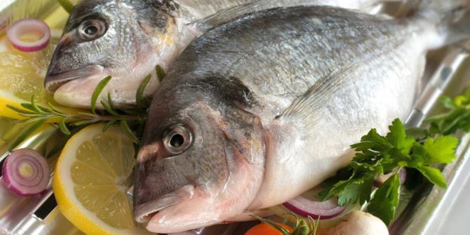 Ikan Nila1 HOBI TERNAK Manfaat Ikan Lele dan Berbagai Jenis Ikan Lainnya word2