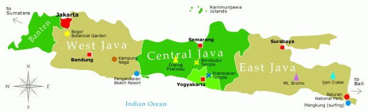 Daftar Harga DOC Ayam Petelur di wilayah Jawa | image 4