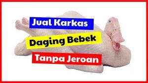 cropped jual karkas daging bebek tanpa jeroan HOBI TERNAK Jual Karkas Bebek word3