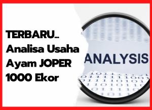 Analisa Usaha Ayam JOPER 1000 Ekor | cover