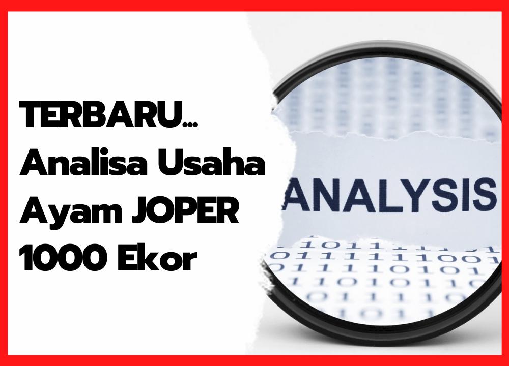 Analisa Usaha Ayam JOPER 1000 Ekor