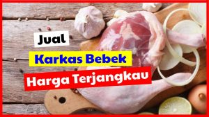 cropped jual karkas bebek harga terjangkau HOBI TERNAK karkas bebek word3