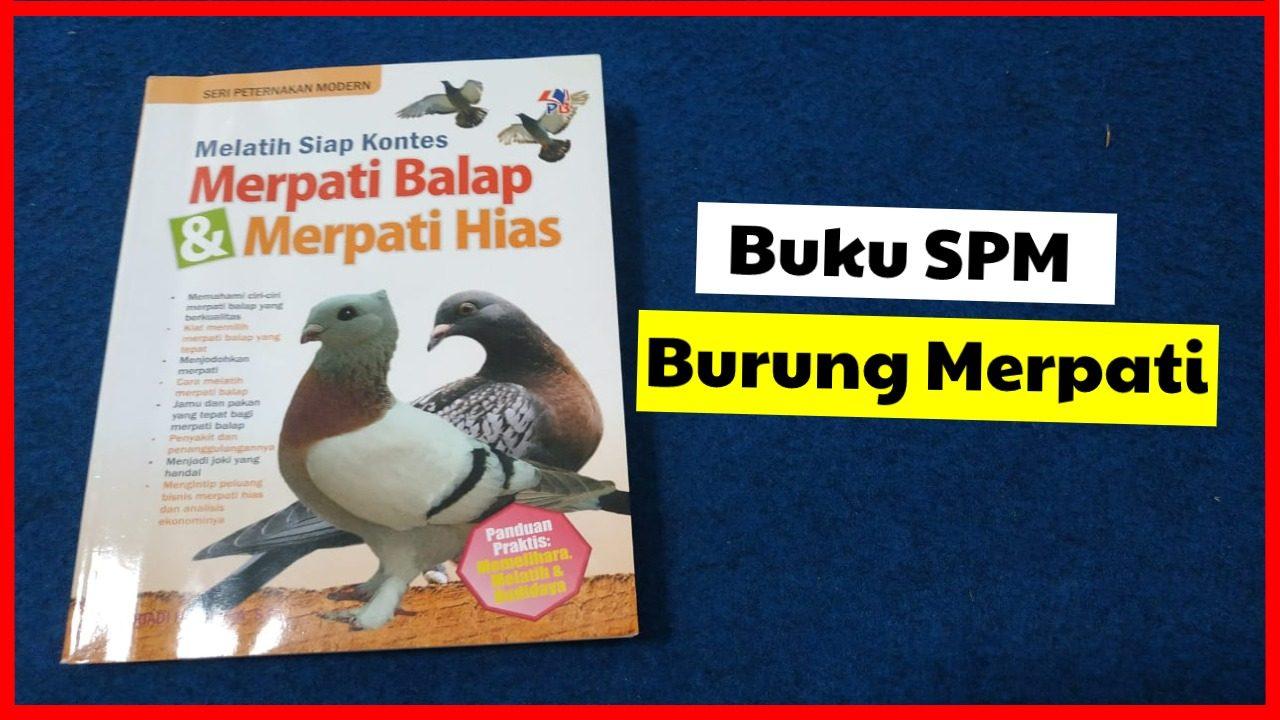 cropped buku burung merpati HOBI TERNAK buku merpati word1