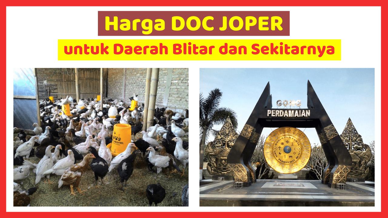 Kandang Ternak JOPER 4 1 HOBI TERNAK harga doc joper blitar word3