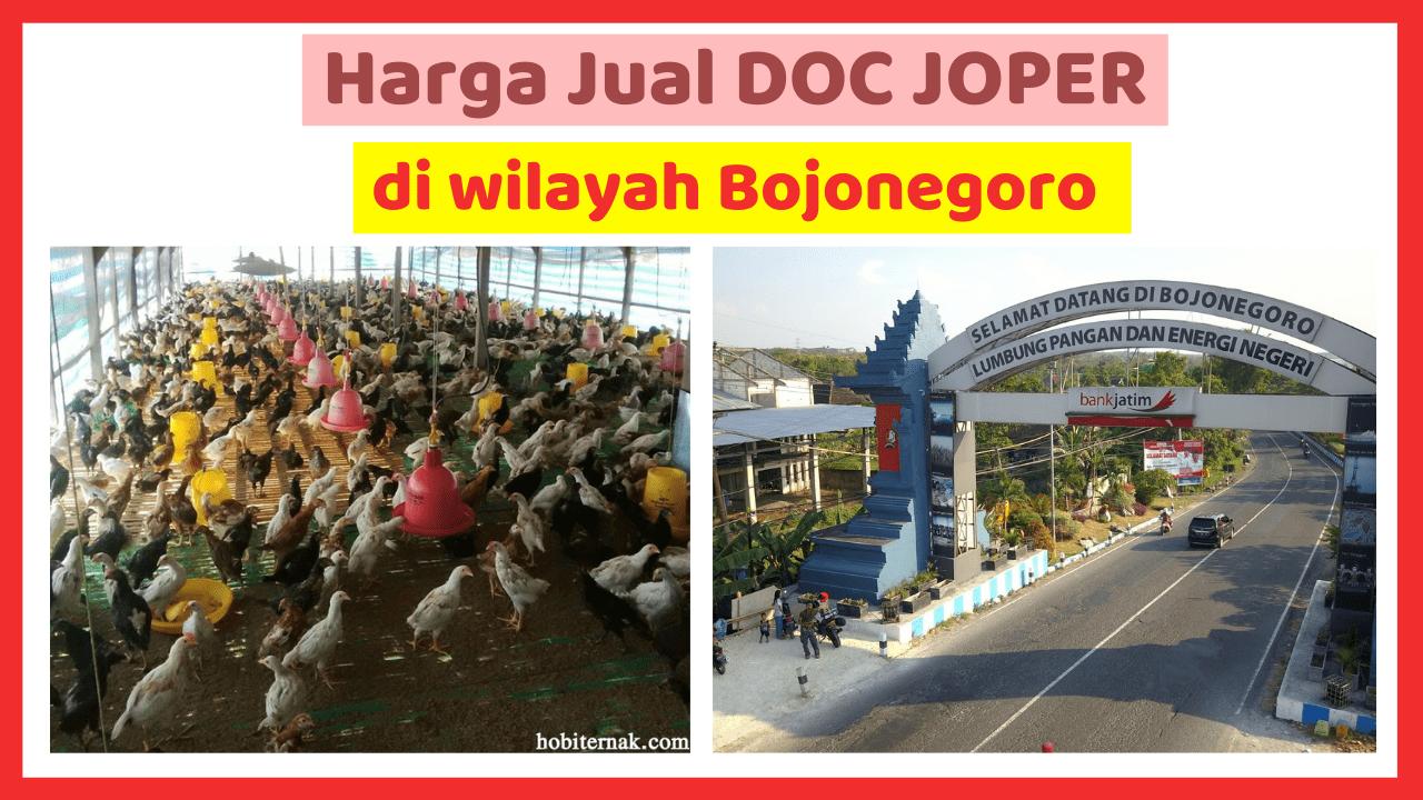 Kandang Ternak JOPER 6 HOBI TERNAK doc joper bojonegoro word2