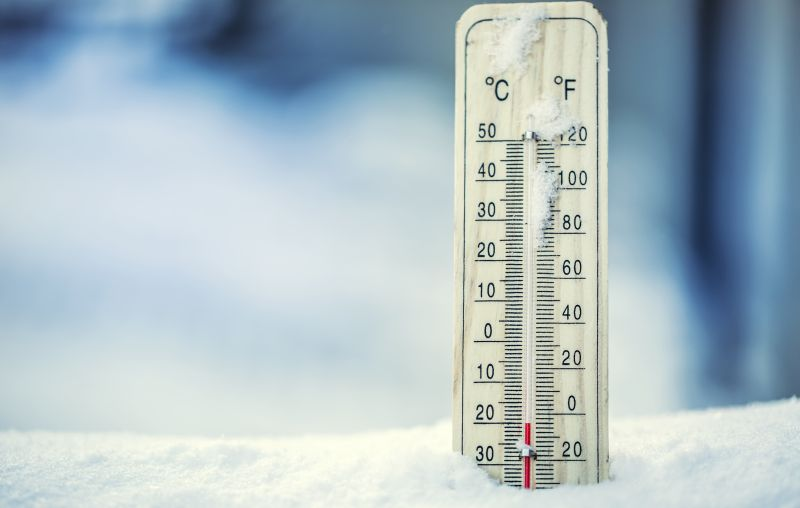 Pemeliharaan ayam joper di suhu dingin memnag menjadi tantangan tersendiri, namun tentu saja ada solusinya.