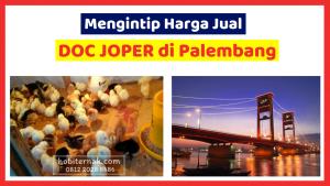 Kandang Ternak JOPER 1 HOBI TERNAK harga DOC joper palembang word3
