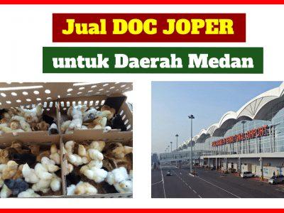 jual doc joper medan 400x300 1 HOBI TERNAK jual doc word2