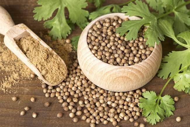 Merica merupakan salah satu obat herbal yang dapat menghilangkan rasa sakit pada unggas