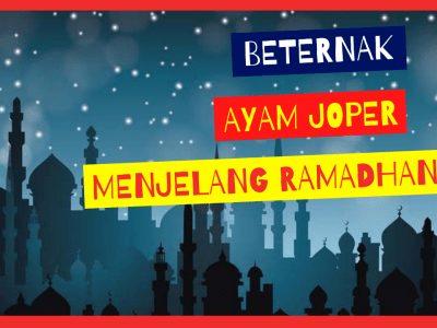 Kandang Ternak JOPER 11 400x300 1 HOBI TERNAK Apakah Beternak Joper Menjelang Ramadhan Menguntungkan? word3