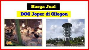 doc joper cilegon