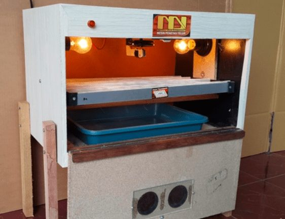 Agar kelembapan di dalam mesin penetas tetap terjaga maka bisa di berikan air sedikit dan di masukkan ke baskom