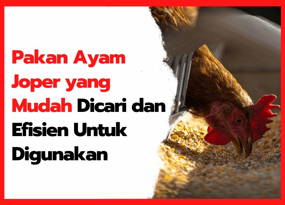 Pakan Ayam Joper yangMudah DicaridanEfisien Untuk Digunakan