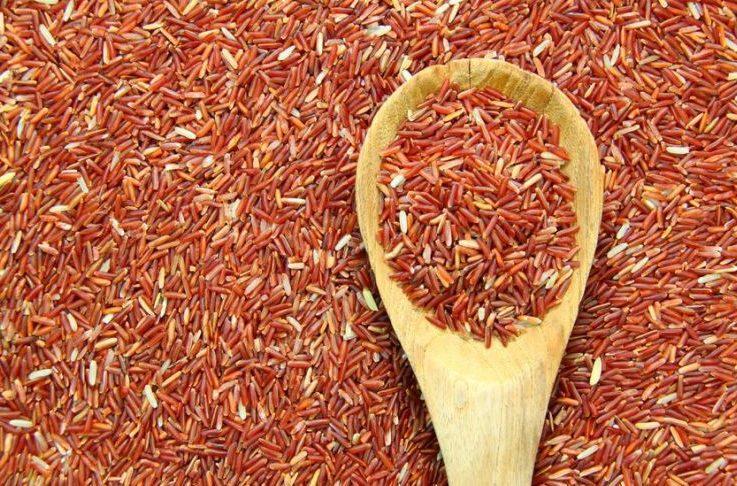 Beras Merah merupakan salah satu pakan ayam cemani yang mengandung gizi serta vitamin yang baik untuk pertumbuhan ayam cemani serta menjadi makanan favaorit ayam cemani
