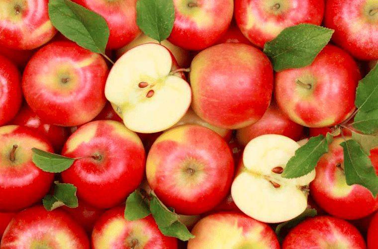 Apel menjadi salah satu makanan yang baik untuk diberikan pada Burung Kenari | gambar 5