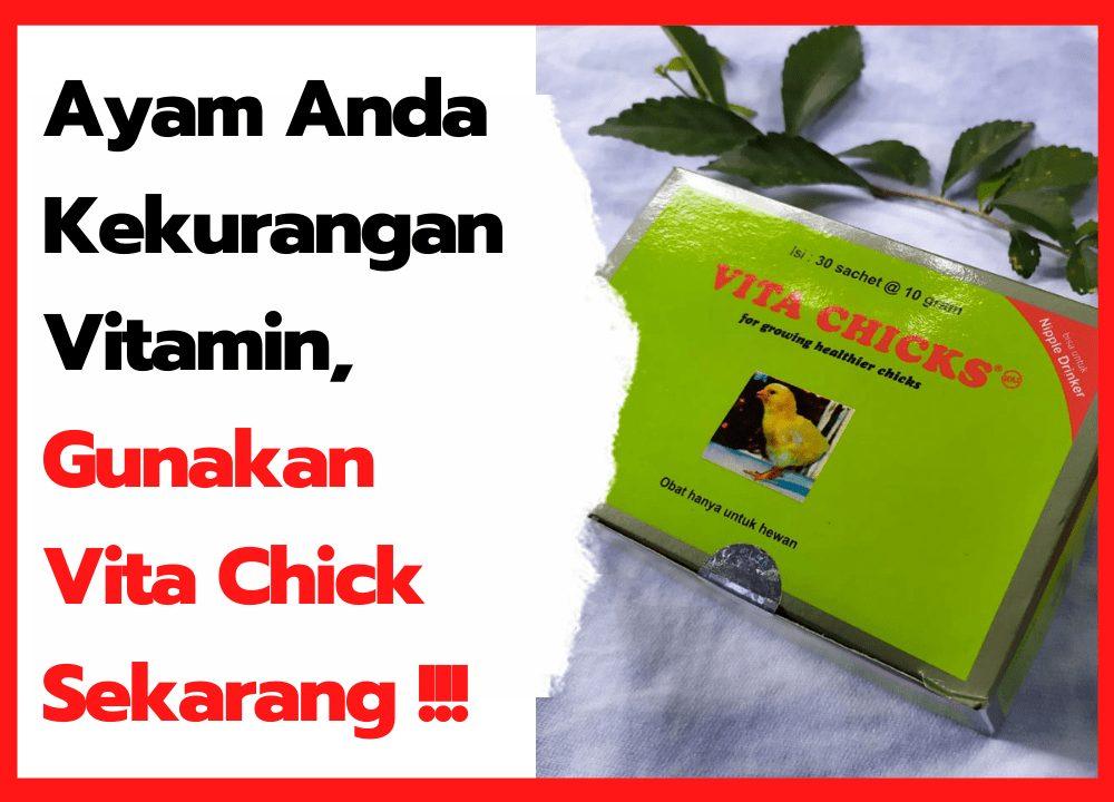 Jual Vita Chick Murah Penambah Vitamin untuk Ayam - thumbnail