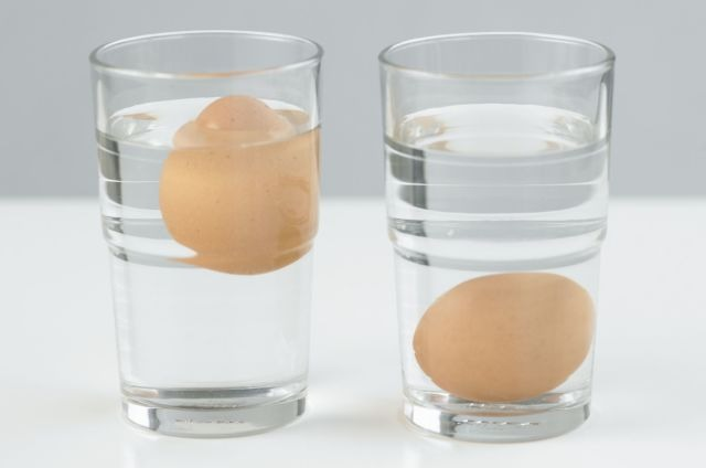 Dengan memasukkan telur ke dalam gelas yang berisi air bisa menjadi salah satu cara untuk mengetahi apakah telur tersebut fertil atau tidak | Image 4