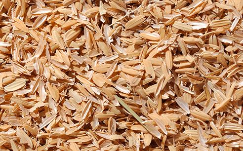 Ini adalah contoh sekam padi yang sudah terpisah dan tinggal kulitnya saja   Image 2