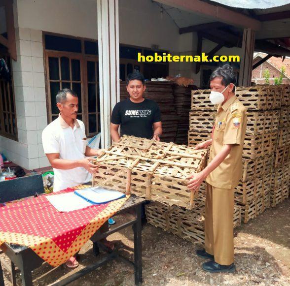 Ini adalah pelanggan hobiternak.com yang order ayam arab pengiriman ke Sumedang, Jawa Barat. Alhamdulillah pengiriman aman dan selamat semuanya | Image 6