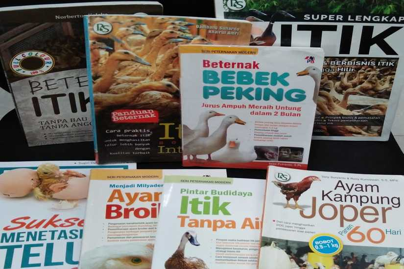 Pilihan_Buku_Peternakan_825x550