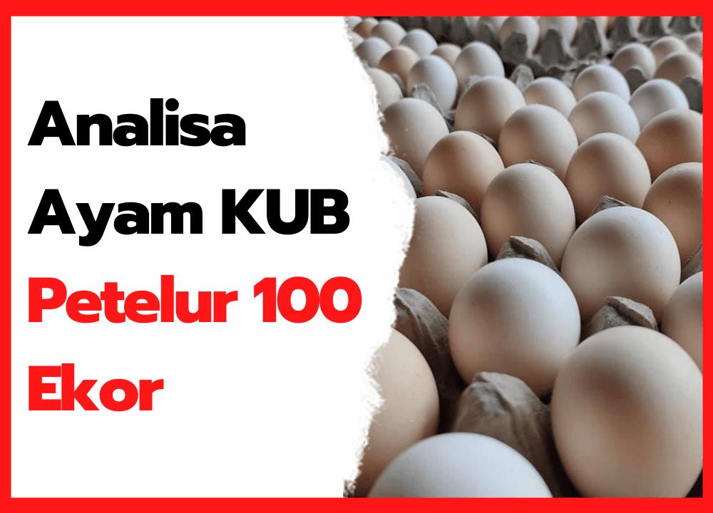 Analisa Ayam KUB Petelur 100 Ekor   cover
