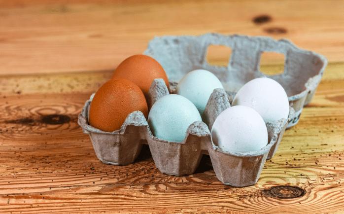 Cukup banyak berbagai jenis telur yang dapat dikonsumsi oleh manusia, contohnya telur ayam, telur bebek, telur puyuh dan lain sebagainya   Image 1
