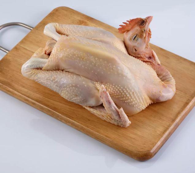 Daging Ayam Kampung memiliki manfaat yang baik untuk kesehatan tubuh manusia, terutama dalam upaya menjaga daya tahan tubuh | image 2