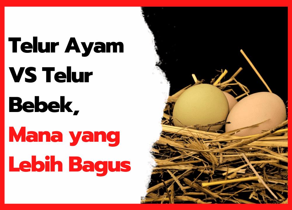 Telur Ayam VS Telur Bebek, Mana yang Lebih Bagus?