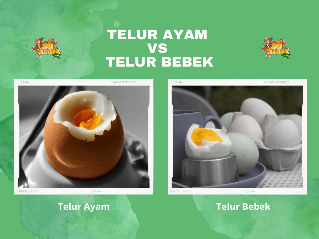 Telur ayam vs telur bebek keduanya memiliki kelebihan dan kekurangan masing masing   Image 3